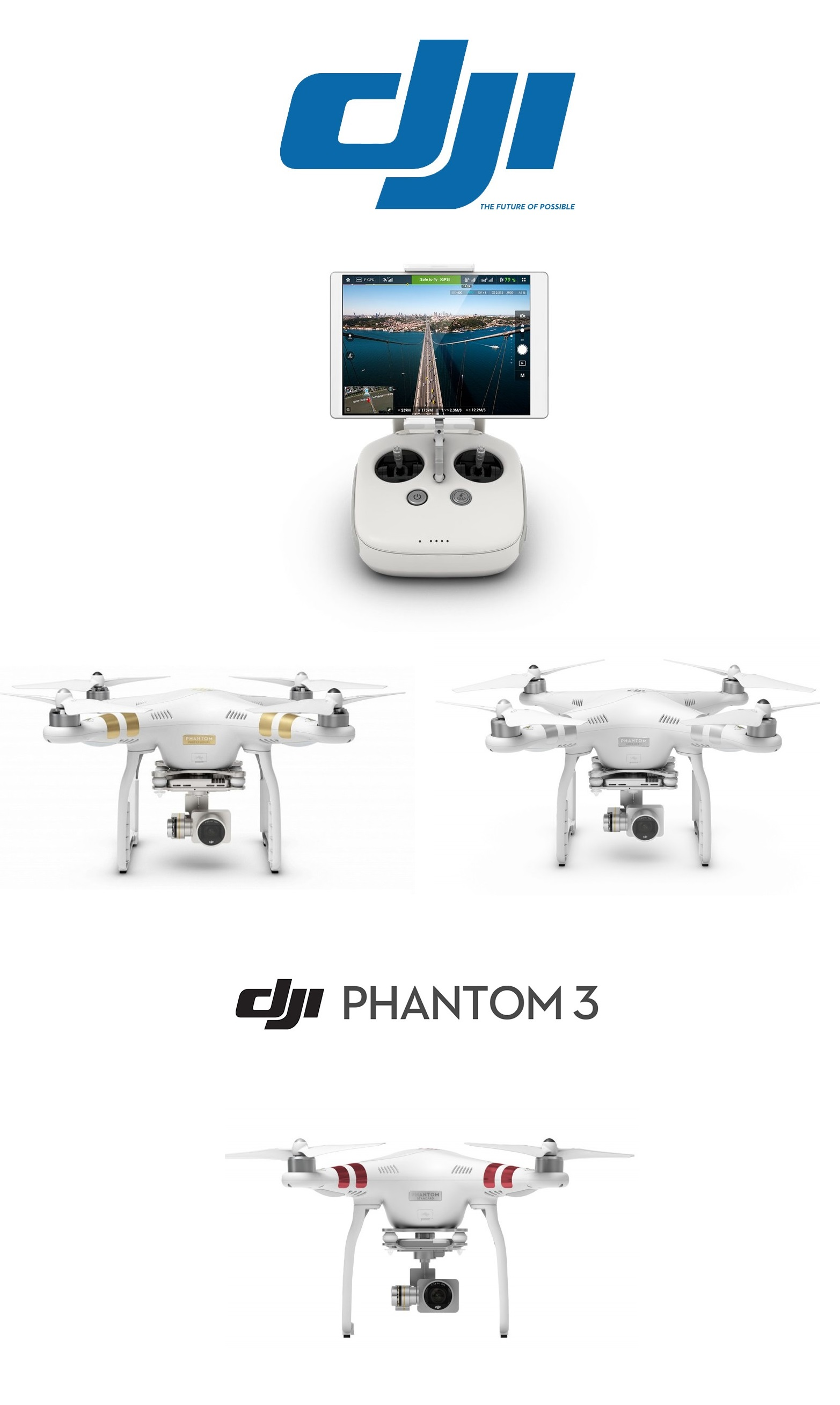 DJI Phantom 3 logo